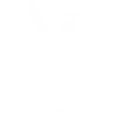 Liako Agency Artist Young Thing Logo